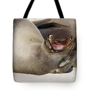 Ready For The Dentist Tote Bag