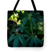 Ready To Bloom Tote Bag