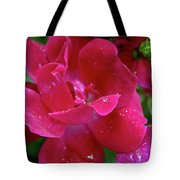 Ready To Celebrate Tote Bag