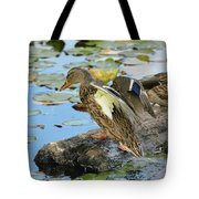 Ready To Plunge Tote Bag