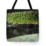 Ready To Spread Tote Bag