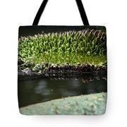 Ready To Spread Tote Bag by Amanda Barcon