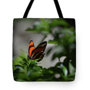 Really Elegant Oak Tiger Butterfly In Nature Tote Bag