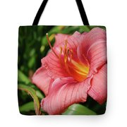 Really Pretty Blooming Pink Daylily In A Garden Tote Bag