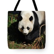 Really Sweet Giant Panda Bear Waddling Around Tote Bag