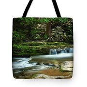 Realm Of The Fay Tote Bag
