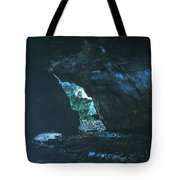Realm Of The Storyteller Tote Bag