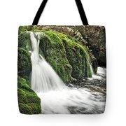 Reany Falls 1 Tote Bag