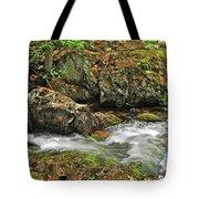 Reany Falls 4 Tote Bag