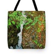 Reany Falls 4548 Tote Bag