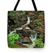 Reany Falls 5 Tote Bag