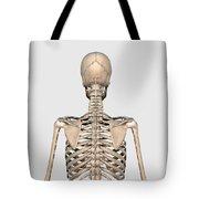 Rear View Of Human Skeletal System Tote Bag