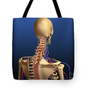 Rear View Of Human Spine And Scapula Tote Bag