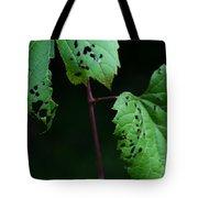 Reciprocal Change Tote Bag