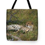Reclining Cheetah 2 Tote Bag