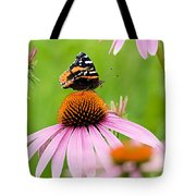 Red Admiral And Cone Flowers Tote Bag