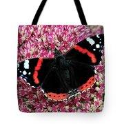 Red Admiral Butterfly Vanesa Atalanta Tote Bag