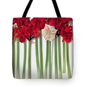 Red Amaryllis With Butterfly Tote Bag