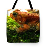 Red American Toad Tote Bag