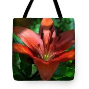 Red And Green No. 2 Tote Bag