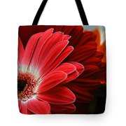 Red And Orange Florals Tote Bag