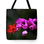 Red And Pink Tote Bag