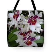 Red And Purple Orchids Tote Bag