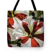 Red And White Petunia Tote Bag