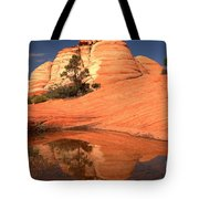 Red And White Reflections In Blue Tote Bag