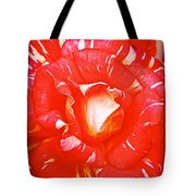 Red And White Rose In Puerto Varas-chile Tote Bag