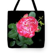 Red And White Rose In Rain Tote Bag