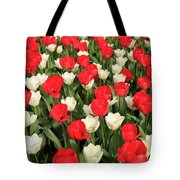 Red And White Tote Bag by Tracy Hall