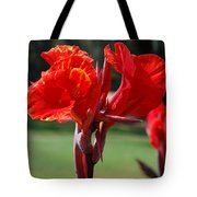 Red And Yellow Asiatic Lilies Tote Bag