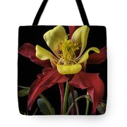 Red And Yellow Columbine Tote Bag