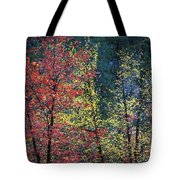 Red And Yellow Leaves Abstract Horizontal Number 1 Tote Bag