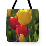 Red And Yellow Tulips Closeup Tote Bag