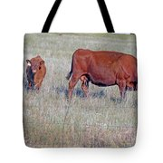 Red Angus Cow And Calf Tote Bag