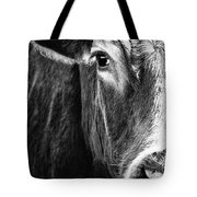Red Angus In Black And White  Tote Bag
