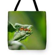 Red Ant On Leaf Tote Bag