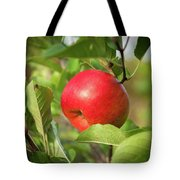 Red Apple On A Tree Tote Bag
