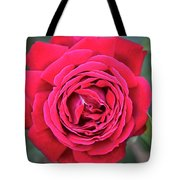 Red As A Rose  Tote Bag