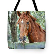 Red At The Fence Tote Bag