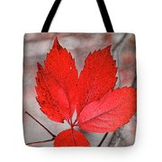 Red Autumn Tote Bag by Elaine Teague