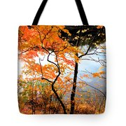 Red Autumn Leaves 5 Tote Bag