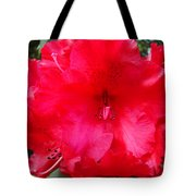 Red Azaleas Flowers 4 Red Azalea Garden Giclee Art Prints Baslee Troutman Tote Bag