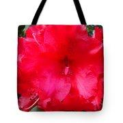 Red Azaleas Flowers 4 Red Azalea Garden Giclee Art Prints Baslee Troutman Tote Bag