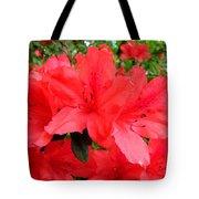 Red Azaleas Tote Bag