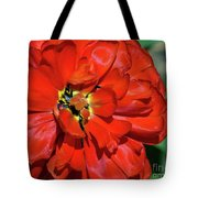 Red Ball Of Fire Tote Bag