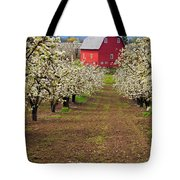 Red Barn Avenue Tote Bag