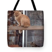 Red, Bella And Oliver Tote Bag